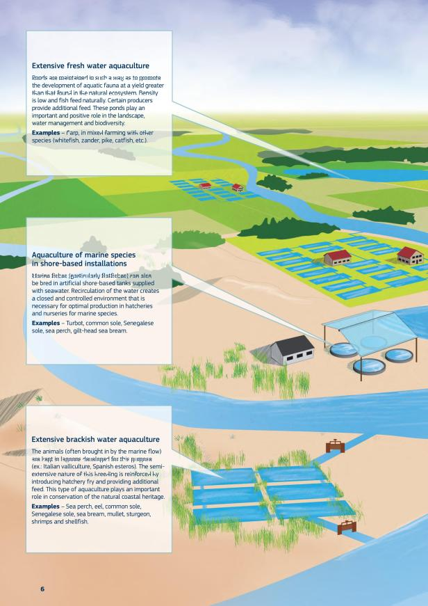 aquacultura1